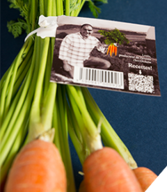 Carrots ARC website